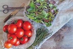 I pomodori su un bello vecchio di piastra metallica con un timo con un coltello e le forbici con un vassoio di foglie delle varie Fotografia Stock