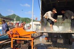I portatori stanno radendo il ghiaccio al porto marittimo locale dell'isola di Dao di raggiro del Vietnam Immagine Stock