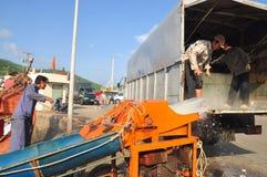 I portatori stanno radendo il ghiaccio al porto marittimo locale dell'isola di Dao di raggiro del Vietnam Immagine Stock Libera da Diritti