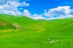 I prati bagnati in altopiani dell'Armenia Fotografia Stock Libera da Diritti