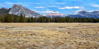 I prati di Tuolumne si avvicinano al tramonto, parco nazionale di Yosemite Immagine Stock