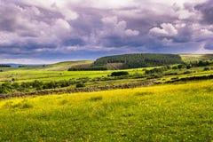 I prati e la pennina ad ovest dei campi attracca Fotografie Stock