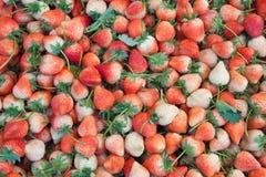 I precedenti della frutta della fragola nel mercato Immagine Stock