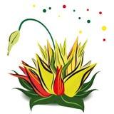 I primi fiori della molla Immagini Stock Libere da Diritti
