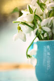 I primi fiori della sorgente Fotografia Stock Libera da Diritti