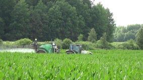 I prodotti chimici dello spruzzo del trattore liquidi sui raccolti di piante del cereale del mais sistemano 4K stock footage