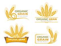 I prodotti organici del grano della risaia del riso giallo dell'orzo e l'insegna sana dell'alimento firmano la progettazione stab royalty illustrazione gratis