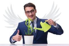 I profitti crescenti di futuro dell'investitore di angelo isolati su bianco immagini stock