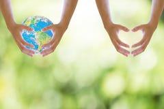 I ręki na lub bocznego mienia tła bokeh naturalny świat zamazany tła opieki pojęcia środowisko odizolowywał małego wp8lywy drzewn Zdjęcia Royalty Free