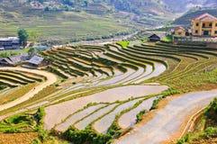 I raccolti del riso di Sapa fotografia stock