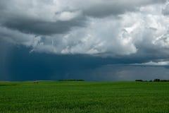 I raccolti della terra e del canola dell'azienda agricola, Saskatchewan, Canada fotografia stock libera da diritti