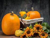 I raccolti di autunno fotografia stock libera da diritti