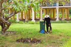 I raccolti di piantatura dell'uomo in giardino comunale Immagine Stock Libera da Diritti