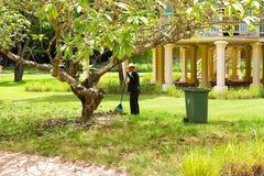 I raccolti di piantatura dell'uomo in giardino comunale Immagini Stock