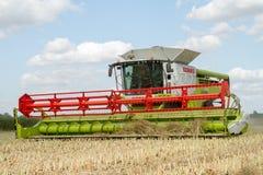 I raccolti moderni di taglio della mietitrebbiatrice di claas Immagine Stock