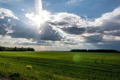 I raggi del ` s del sole da Immagine Stock