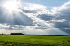 I raggi del ` s del sole da Fotografia Stock