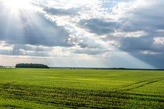 I raggi del ` s del sole da Immagini Stock Libere da Diritti
