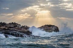 I raggi del sole attraverso le nuvole nel cielo di alba, le onde che si rompono con lo spruzzo sulle rocce immagini stock