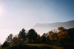 I raggi della sera espongono al sole attraversare le nuvole e la nebbia al prato delle foreste di conifere in montagne immagine stock libera da diritti