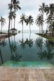 I raggruppamenti di acqua lisci riflette l'alta palma scenica Immagine Stock