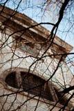 I rami contro la chiesa Fotografia Stock Libera da Diritti
