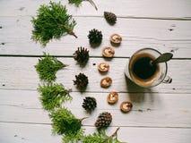 i rami del cipresso, di una tazza di caffè, dei coni della foresta e delle noci si trovano su un fondo bianco Fotografia Stock Libera da Diritti