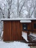I rami di alberi sulla casa nell'inverno infuriano Quinn Fotografia Stock