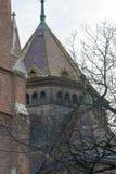 I rami di albero nascondono il dettaglio architettonico di un monumento storico Budapest, Ungheria nell'inverno fotografia stock