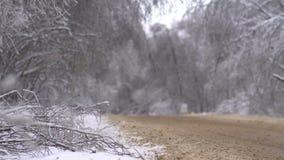 I rami di albero piegati sotto il peso di neve e ghiacciano la strada video d archivio