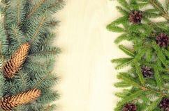 I rami di due varietà si attillano e dei coni di abete su un backg di legno Immagini Stock