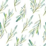I rami di olive senza cuciture del modello dell'acquerello strutturano il fondo royalty illustrazione gratis