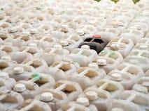 I recipienti di plastica neri sono fra bianco recipienti di plastica neri del fuoco Fotografia Stock Libera da Diritti