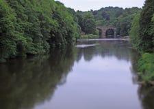 I rematori sul fiume durano, Durham, Inghilterra Immagini Stock