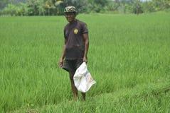 I residenti hanno sovvenzionato l'uso del fertilizzante da BULOG Fotografia Stock