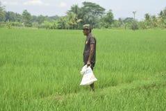 I residenti hanno sovvenzionato l'uso del fertilizzante da BULOG Immagini Stock