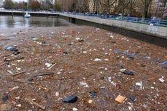 I residui sparpagliano la baia del sarago americano Fotografia Stock