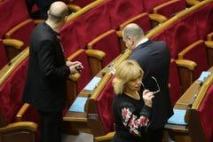 I riassunti ucraini del Parlamento funzionano con il nuovo struttura 27 novembre 2014 Immagini Stock