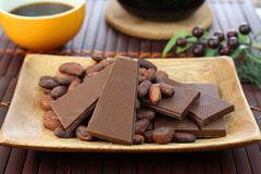 Chocolate and cocoa bean. I rode chocolate and cocoa bean on a plate Royalty Free Stock Photography