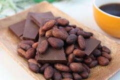 Cocoa bean and chocolate. I rode chocolate and cocoa bean on a plate Royalty Free Stock Photo
