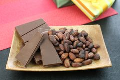 Cocoa bean and chocolate. I rode chocolate and cocoa bean on a plate Stock Photography