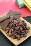 Cocoa bean and chocolate. I rode chocolate and cocoa bean on a plate Royalty Free Stock Images