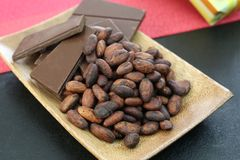 Cocoa bean and chocolate. I rode chocolate and cocoa bean on a plate Royalty Free Stock Photography