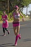 I rosa färgerna Arkivfoto