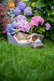 I sandali beige con le sogliole blu si trovano sull'erba Immagine Stock Libera da Diritti