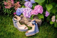 I sandali beige con le sogliole blu si trovano sull'erba Fotografia Stock