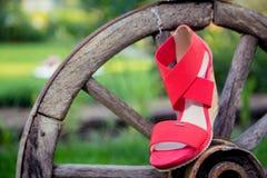 I sandali delle donne sono sulla ruota Fotografie Stock Libere da Diritti