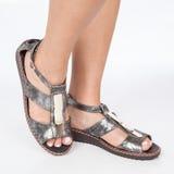 I sandali di cuoio grigi con oro hanno applicato sui piedi il mujere su fondo bianco immagini stock
