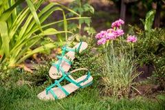 I sandali verdi si trovano sull'erba, scarpe comode delle signore Fotografie Stock