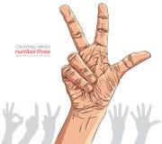 I segni della mano di numeri hanno messo, numero tre, illustrati dettagliato di vettore Fotografie Stock Libere da Diritti